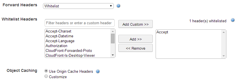 Specifying Accept header in AWS console